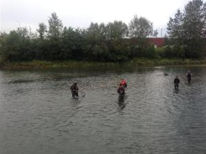 Locals Salmon fishing in Shipp Creek just outside our hotel in Anchorage.